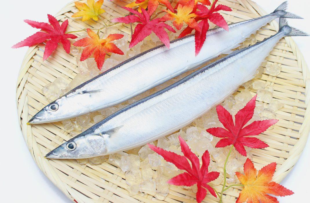 171017秋刀魚